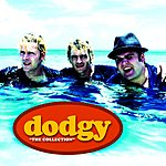 Dodgy Dodgy: The Collection