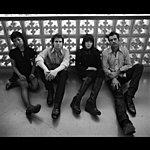 The Section Quartet Juicebox (Single)