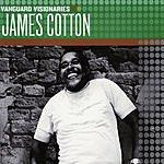 James Cotton Vanguard Visionaries: James Cotton
