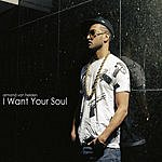 Armand Van Helden I Want Your Soul (6-Track Remix Maxi Single)