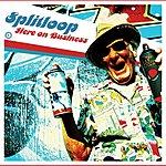 Splitloop Here On Business