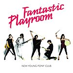 New Young Pony Club Fantastic Playroom