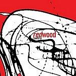 Redwood Road Trip