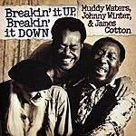 Muddy Waters Breakin' It Up, Breakin' It Down