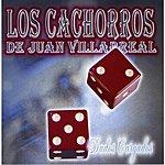 Los Cachorros De Juan Villarreal Dados Cargados