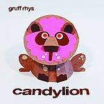 Gruff Rhys Candylion