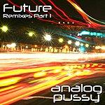 Analog P*ssy Future - Remixes, Pt.1 (9-Track Remix Maxi Single)