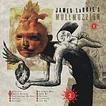 James LaBrie Mullmuzzler 2