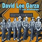 David Lee Garza Y Los Musicales Cuatro Caminos