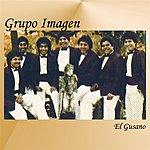 Grupo Imagen El Gusano