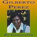 Gilberto Perez El Caminante