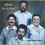 Alfredo De La Rosa Lagrimas Lloro