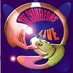 The Chameleons UK Live At The Academy, Vol.1