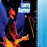 Larry Garner Embarrassment To The Blues?