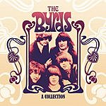 The Byrds Turn, Turn, Turn: A Collection