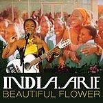 India.Arie Beautiful Flower (Single)