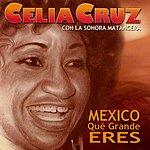 Celia Cruz Mexico Que Grande Eres