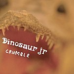 Dinosaur Jr. Crumble/Yer Son
