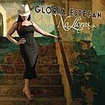 Gloria Estefan No Llores (Single)