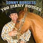Sonny Burgess Too Many Horses (Single)