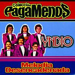 Yndio Melodia Desencadenada