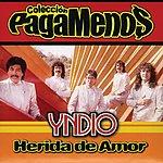 Yndio Herida De Amor