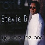 Stevie B. You Are The One (8-Track Remix Maxi Single)