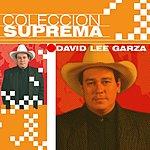 David Lee Garza Coleccion Suprema