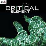 Critical Element (Single)