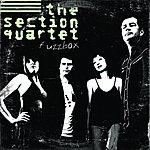 The Section Quartet Fuzzbox