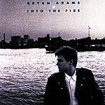 Bryan Adams Into The Fire