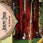 Jeremy Enigk The Missing Link