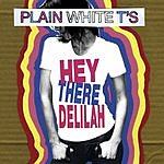 Plain White T's Hey There Delilah (Single)