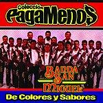 Banda San Miguel De Colores Y Sabores