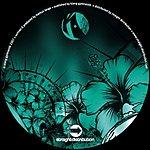 Markus Lange Spin EP