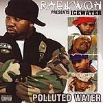 Raekwon Icewater: Polluted Water (Parental Advisory)