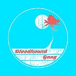 Bloodhound Gang Screwing You On The Beach At Night (Parental Advisory)(2-Track Single)