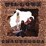 The Willowz Chautauqua