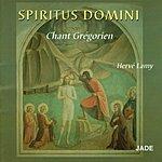 Hervé Lamy Spiritus Domini