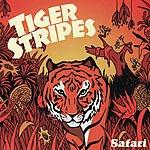 Tiger Stripes Safari