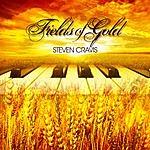 Steven Cravis Fields Of Gold (Single)