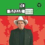 David Lee Garza Serie Verde: David Lee Garza