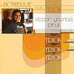 Victor Yturbe Piruli Homenaje A Los Trios