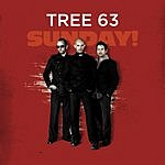 Tree63 Sunday!
