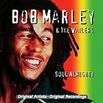 Bob Marley & The Wailers Soul Almighty