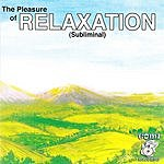Gomi Relaxation (The Pleasure Of)
