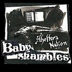 Babyshambles Shotter's Nation