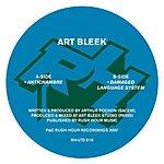 Art Bleek Antichambre/Damaged Language System