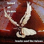 Head Of Femur Leader And The Falcon