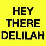 Plain White T's Hey There Delilah (4-Track Maxi-Single)